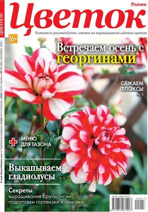 Цветок №17 2020